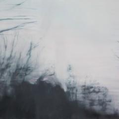 Heiser Galleries 2011