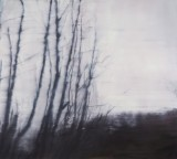 'Darkwood no.2' 137 x 153cm oil on linen